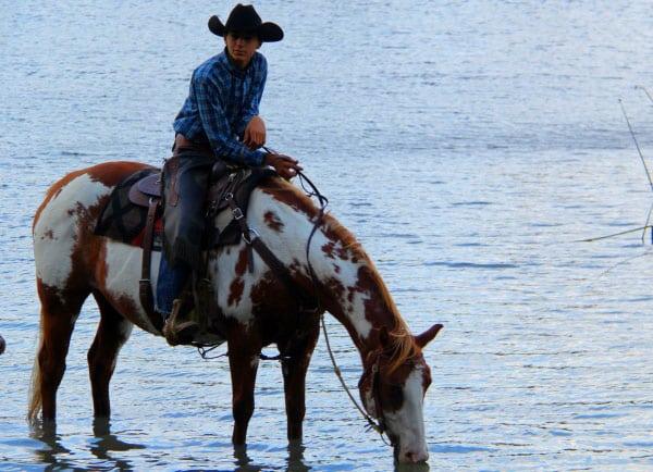 heli-horseback